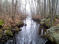 January 1, 2011 - Indian Brook, behind the Hopkinton State Park ranger station.© John Ritz
