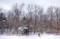 Walking the dog in Hopkinton State Park© Mark Collins