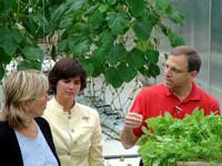 Senator Karen Spilka and Rep. Carolyn Dykema listen as Jeff Barton explains how the plants are grown at Water Fresh Farm.